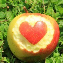 Apfel - Symbol der Liebe und Schönheit