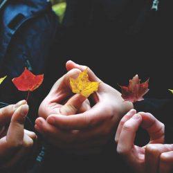 Herbst – die Pflege zwischen Hitze und Kälte
