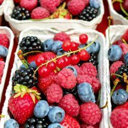 Pflanzliche Nahrungsergänzungsmittel